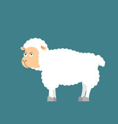 sheep farm isolated animal ewe on white background vector image