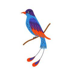 Tropical bird beautiful birdie with bright vector