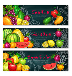 banners of exotic fresh fruits vector image