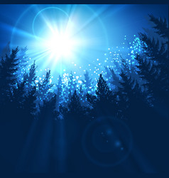 pine forest background vector image vector image