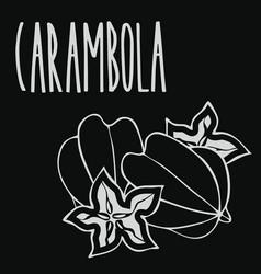 Chalkboard starfruit or carambola vector