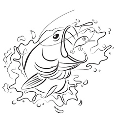Drawing fishing vector
