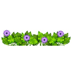 Green leafy plants with flowers vector