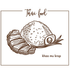 Khao mu krop with egg from thai food vector