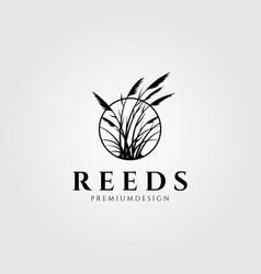 reeds logo aquatic plant design vector image