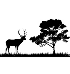 silhouette of deer and tree vector image