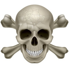 Skull and crosbones vector image