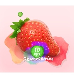 Strawberry watercolor vector