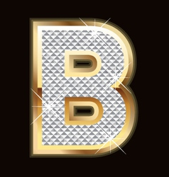 b bling bling vector image vector image