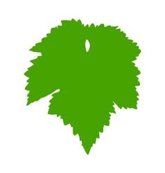 Vine leaf vector image vector image