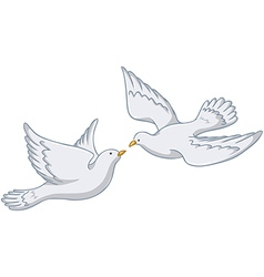 White Pigeons Flying Together vector image vector image