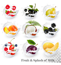 Big collection of fruit in a milk splash vector