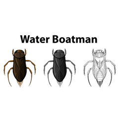 Doodle character for water boatman vector