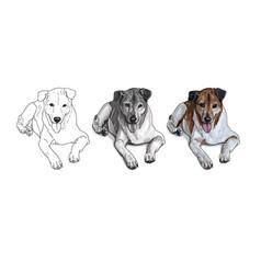 lying brown dog vector image