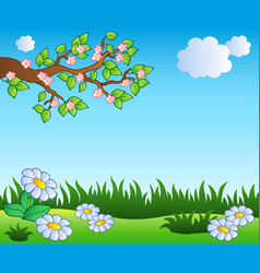 spring meadow with daisies vector image