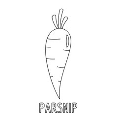 parsnip icon outline style vector image vector image