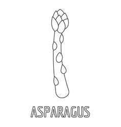 asparagus icon outline style vector image vector image