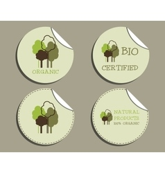 Set of unusual green organic labels - stickers for vector image