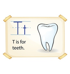 A letter T for tooth vector image