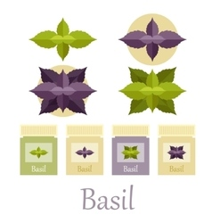 Basil icons set vector