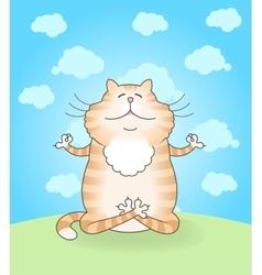 Cat practicing yoga vector