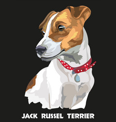 Colorful jack russel terrier vector