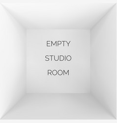Empty 3d studio white container inside view vector