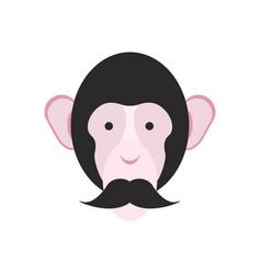 monkey with mustache chimpanzee head primacy of vector image