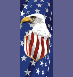 national symbol of the usa vector image