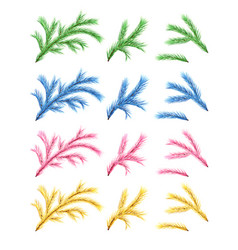 set of fir branches vector image