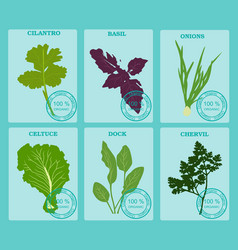 Set vegetables and herbs flat healthy vegetarian vector