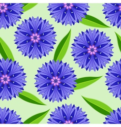 Summer seamless pattern with cornflowers vector