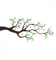 illustration tree vector image vector image