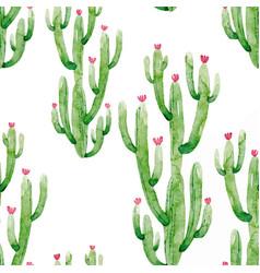 watercolor cactus pattern vector image