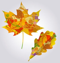 Colorful autumn leaves vector