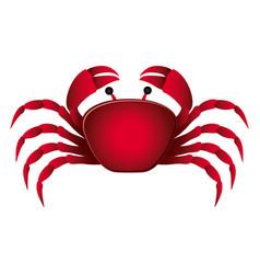 Colorful picture crab aquatic animal vector