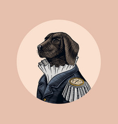 dog officer or military man in old uniform vector image