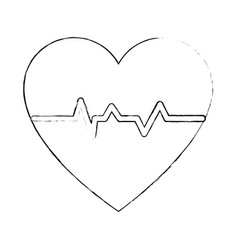 heart and cardiology vector image