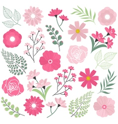 Pink Wedding Flowers vector image