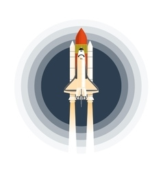 Shuttle vector image