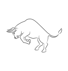 Angry bull attack vector