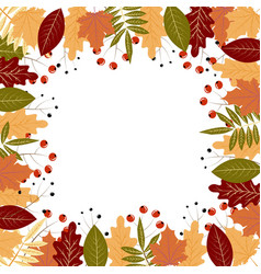 Autumn frame with colorful leaves and berries vector