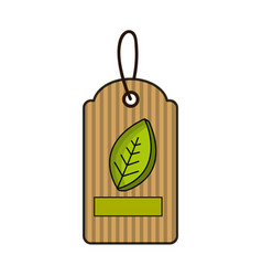 Label with leaves and ribbon inside vector