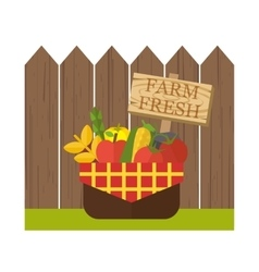 Organic food basket vector