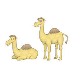 set camels vector image