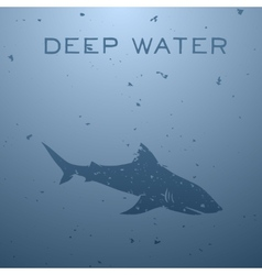 Shark concept vector image