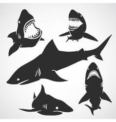 Set of sharks vector