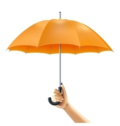 Umbrella In Hand vector image vector image