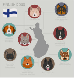 Dogs by country of origin finnish dog breeds vector