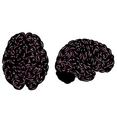 pink lines brain silhouettes set vector image